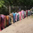 Bags of nets ready for baling - More nets from Danajon Bank ready to join our community-based supply chain